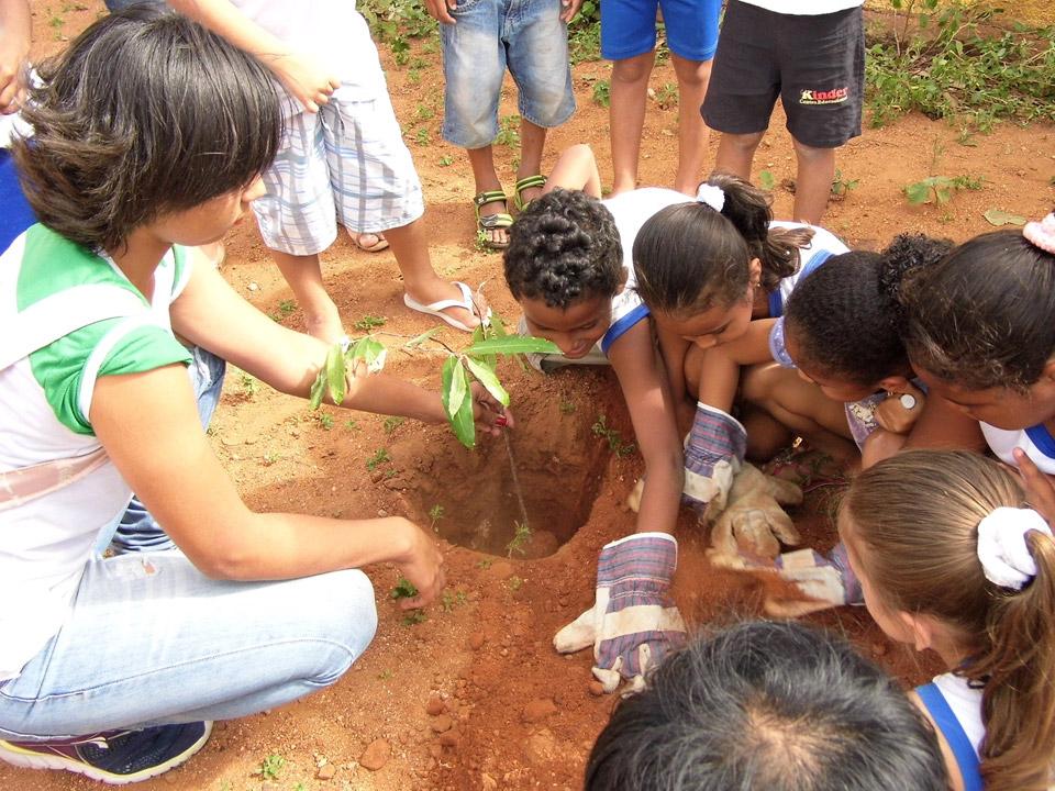 Projeto Floresta Urbana